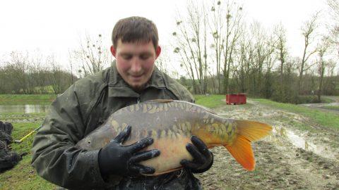 quarry bank carp fishing